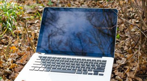 laptop-in-forest-nature-concept